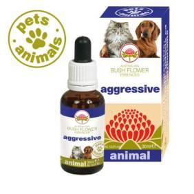 Animal Aggressive