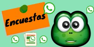 timos de whatsapp