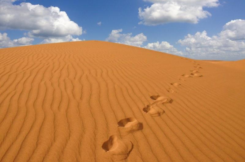 Ilhas Canárias: A quebra da paisagem com dunas desérticas tornam o local ainda mais curioso
