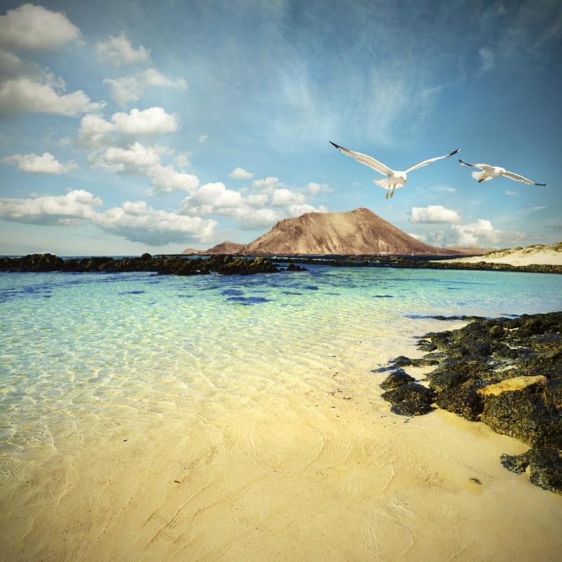 Ilhas Canárias: As atrativas e aconchegantes águas cristalinas fazem a imaginação voar longe