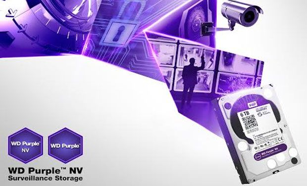 WD Purple tab hard disks are intentionally designed for video recording