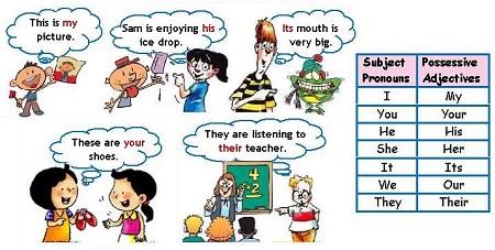 Các từ chỉ tính sở hữu đi với các danh từ , nó diễn đạt mối quan hệ giữa 2 đối tượng hoặc nhóm đối tượng được nói đến.