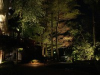 Low Voltage Landscape Lighting - ellenslillehjorne
