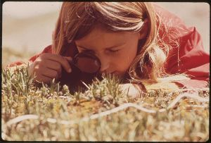 1280px-GIRL_USES_A_MAGNIFYING_GLASS_TO_STUDY_PLANT_LIFE_IN_THE_TUNDRA_OF_THE_ROCKY_MOUNTAINS._THE_DENVER_PTA_SPONSORED_A..._-_NARA_-_543740