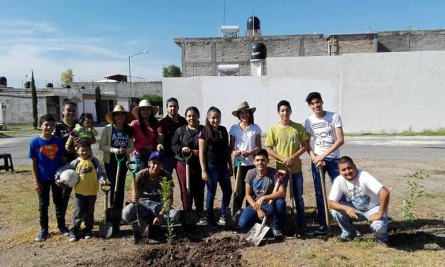 Plantan árboles en Villas del Maguey