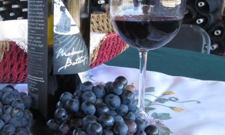 Bodega LOBO: un vino con sabor a San Francisco
