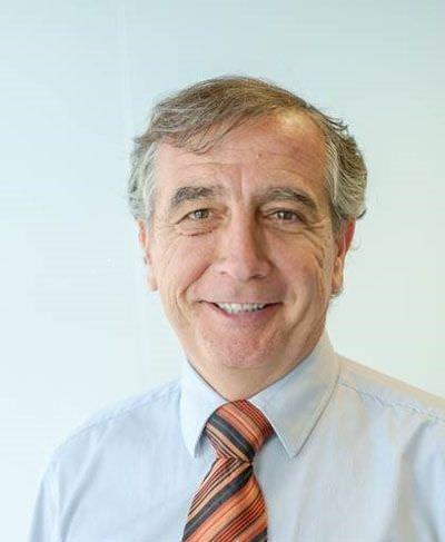 Alberto de Frutos, director general de Bovis.