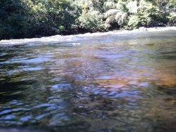 Rio Saldanha