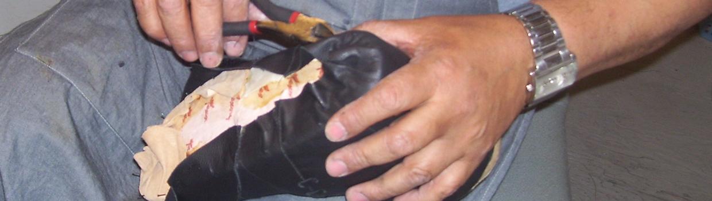 custom footwear niagara | Elios Foot Comfort Centre