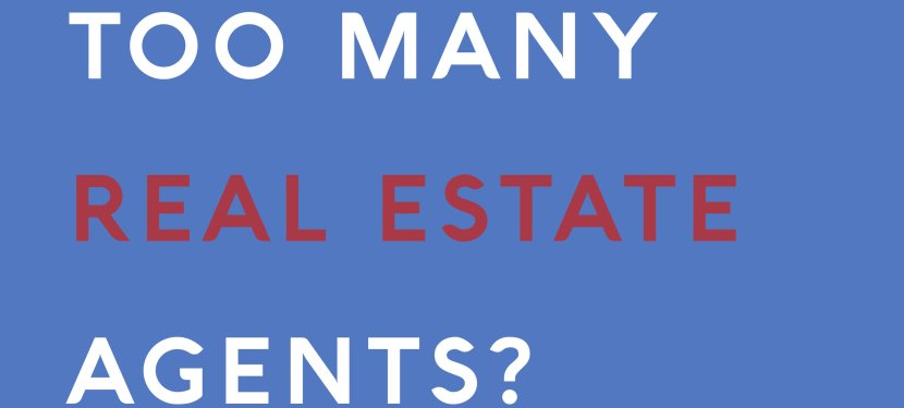 Too Many Real Estate Agents?