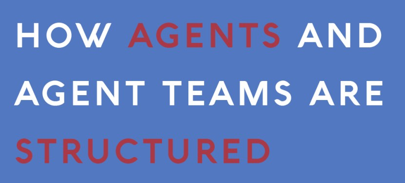 How Agents and Agent Teams Are Structured