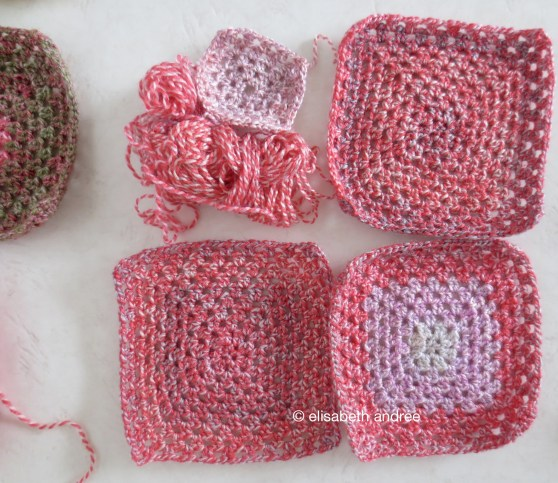 variegated blocks raspberry