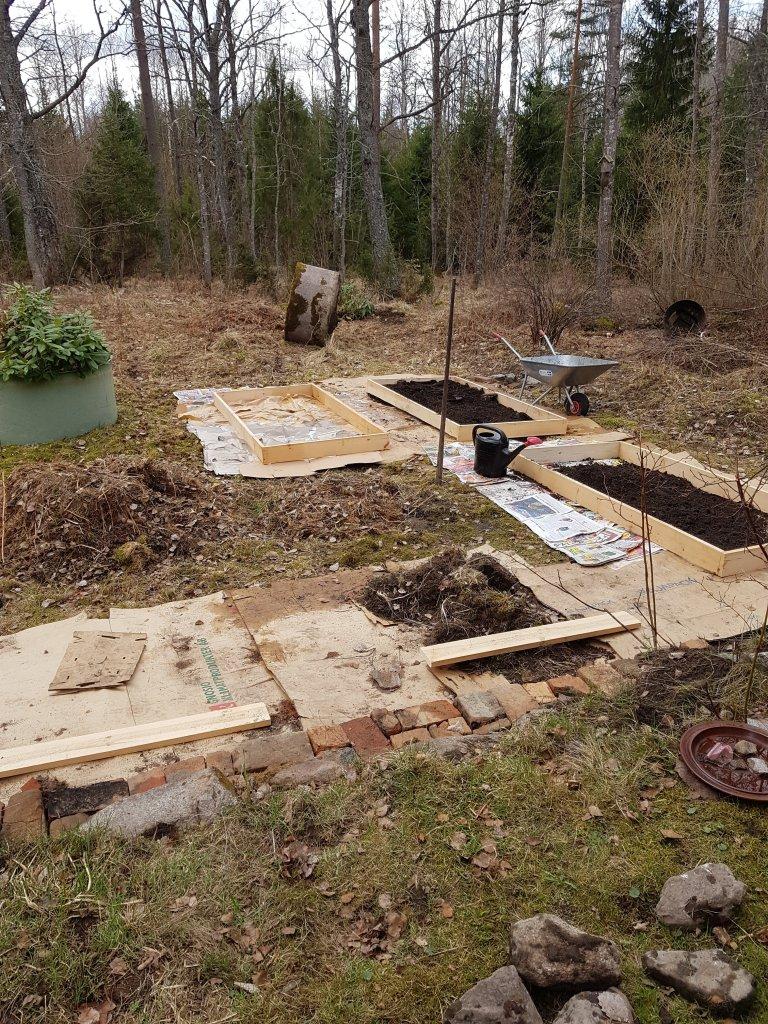Trädgård hos Elisabeth Biström. Ett trädgårdssland byggs fram.