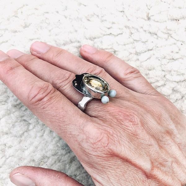 Ring Yellow Beetle
