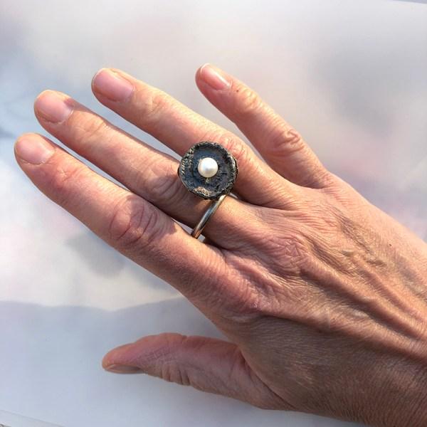 Ring Seedpod