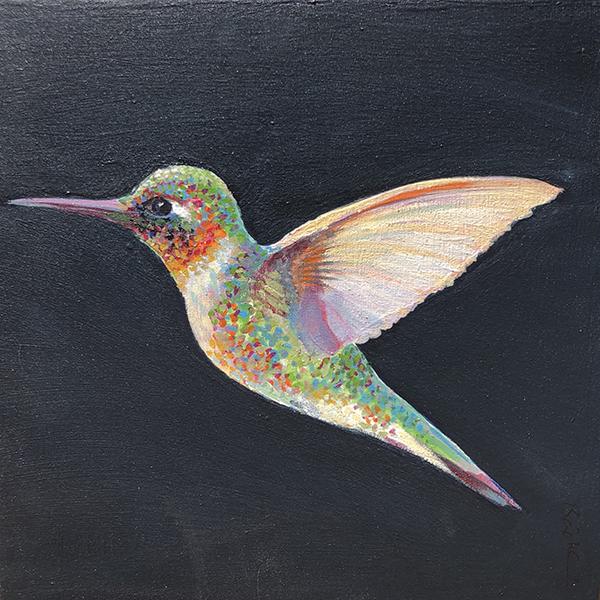 hummingbird on dark ground