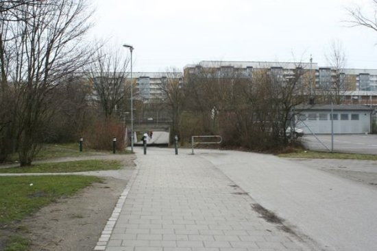 Här vid Annelundsgatan i Malmö mördades i natt en 20-årig man. Bild: mapio.net