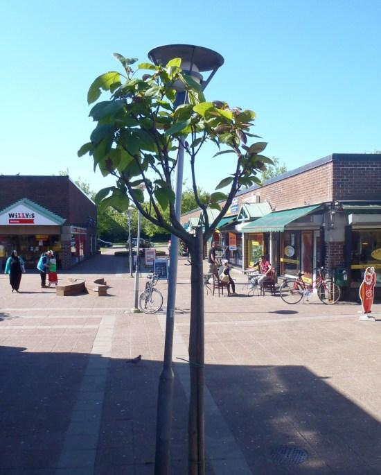 Lindängens centrum i Malmö - en plats för brott Foto: Lindangenidag.se