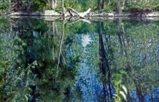 Elisabeth Rass, HIGH WATER, Series Elements, analog photography