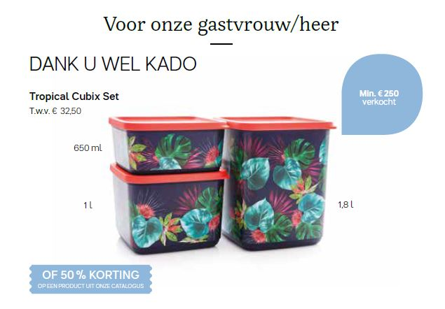 dank u wel cadeau - tropical cubix set