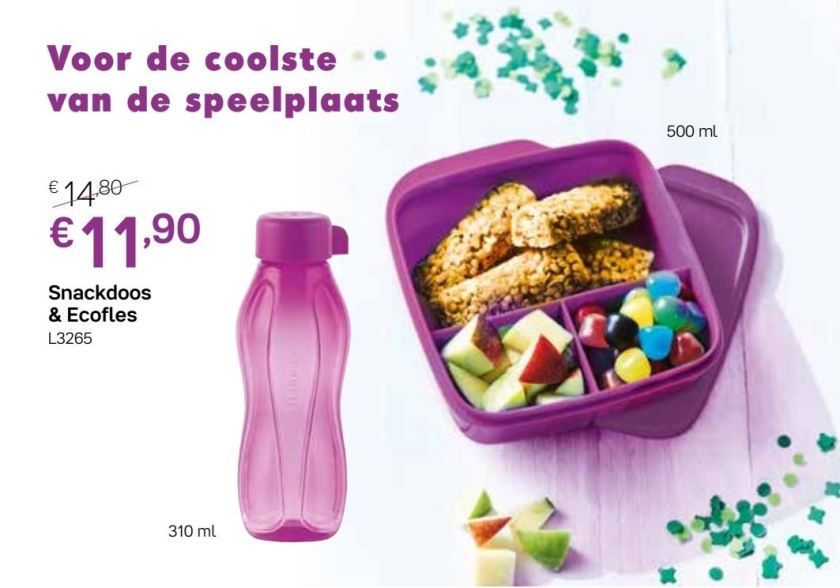 snackdoos en ecofles 310 ml