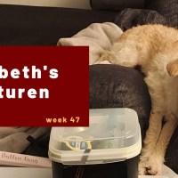 Elisabeth's avonturen week 47 - 2020