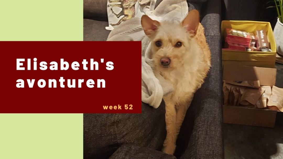 Elisabeth's avonturen week 52 – 2020