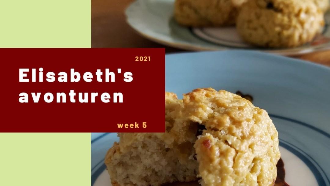 Elisabeth's avonturen week 5 – 2021
