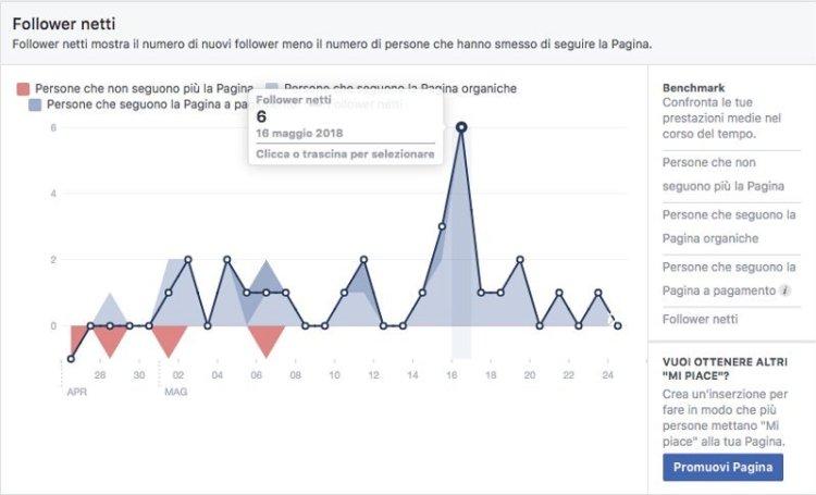 Facebook insights fan