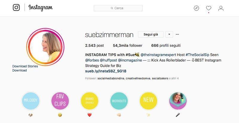biografia su Instagram di Sue b