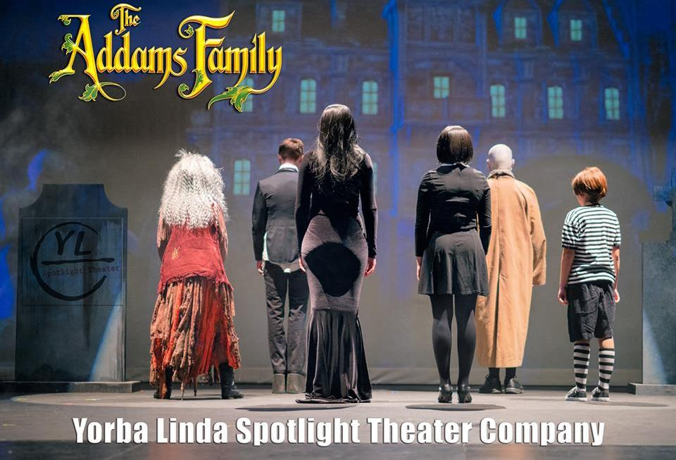 The Addams Family (Video)