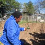 Halieth Hatungimana gives GVP students a tour of Umurima Farm.