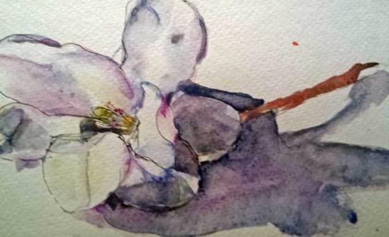 sketchbook skool flower-sketch