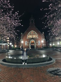 Cherry trees and the chapel at Georgetown University