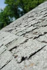 Elite_Roofing_Damaged_Shingles