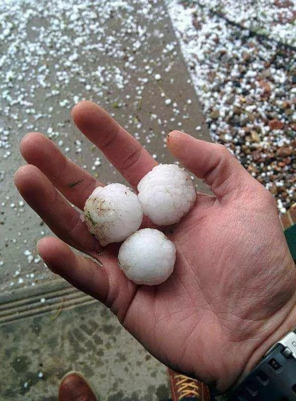 elite roofing colorado springs hail 2