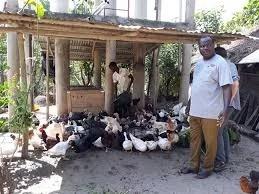 Monsieur Babadjide est docteur vétérinaire