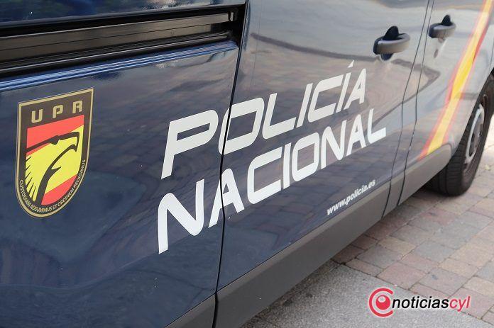 Siete detenidos e incautadas 6.000 plantas de marihuana en Carmona (Sevilla)