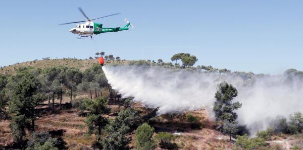 Declarado un incendio forestal en Almonte