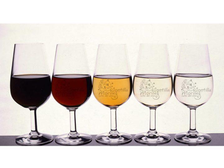 China visita Montilla atraída por sus vinos y bodegas