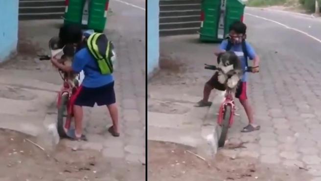 El vídeo viral de un niño que pone a su mascota una mascarilla contra el coronavirus