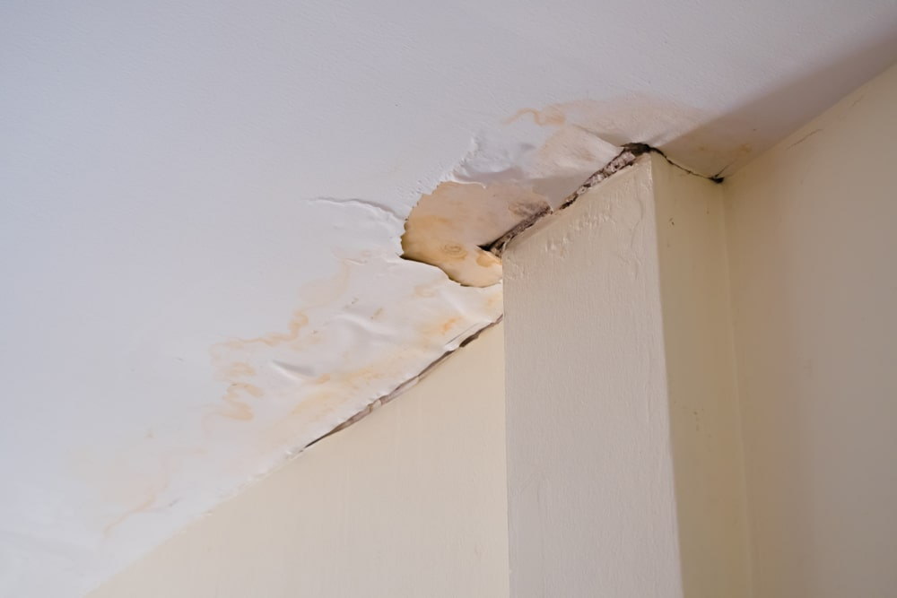 ¿Puedo denunciar a mi vecino si no repara un 'salidero' que afecta a mi vivienda?