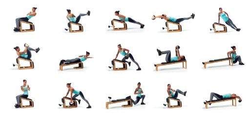 NOHrD-TriaTrainer-Bench-Exercises-Elite-Fitness-Perth