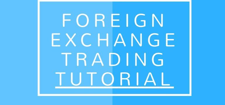 Foreign Exchange Trading Basics  Forex Tutorial  Elite Forex Trading