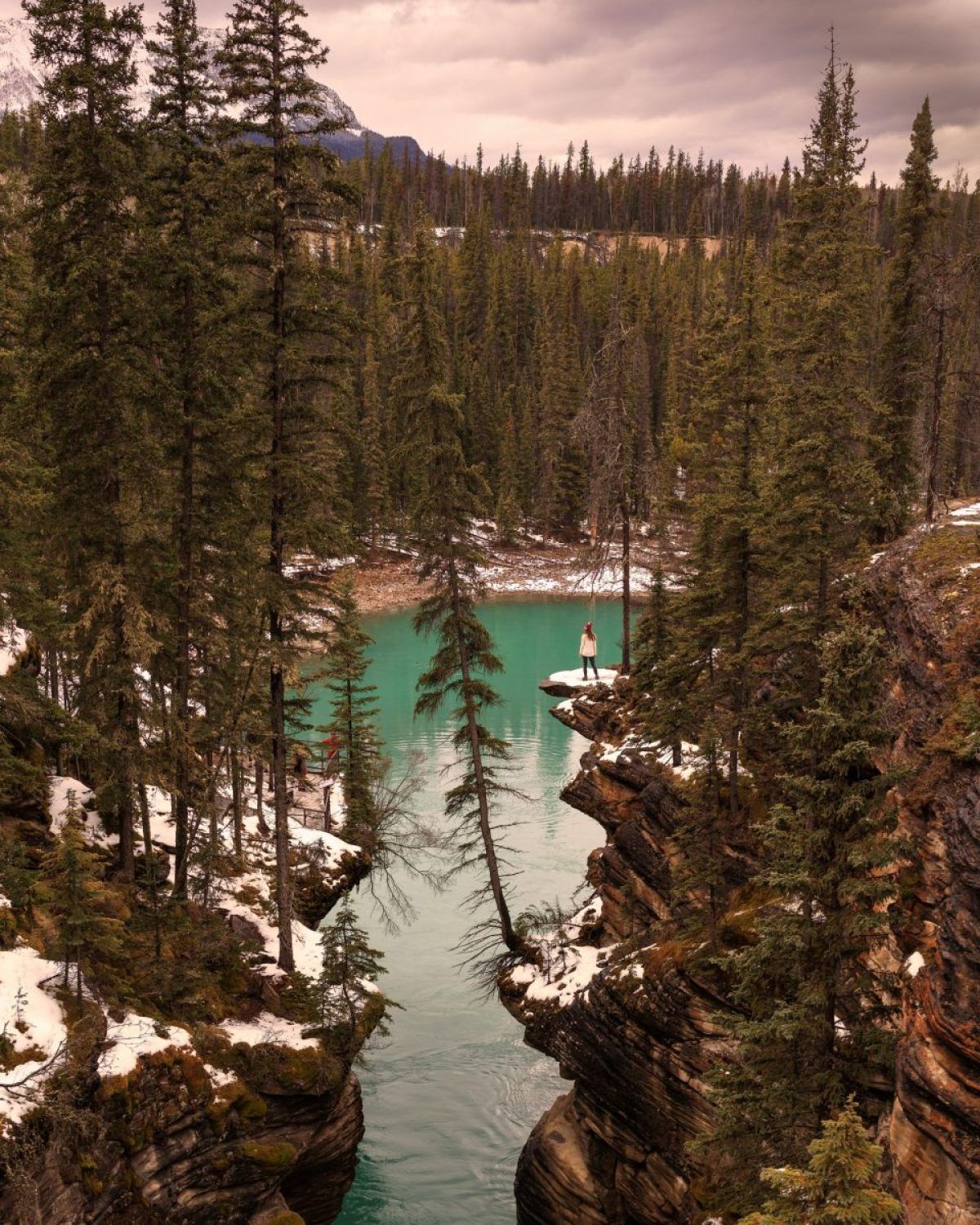 Athabasca Falls Icefields Parkway