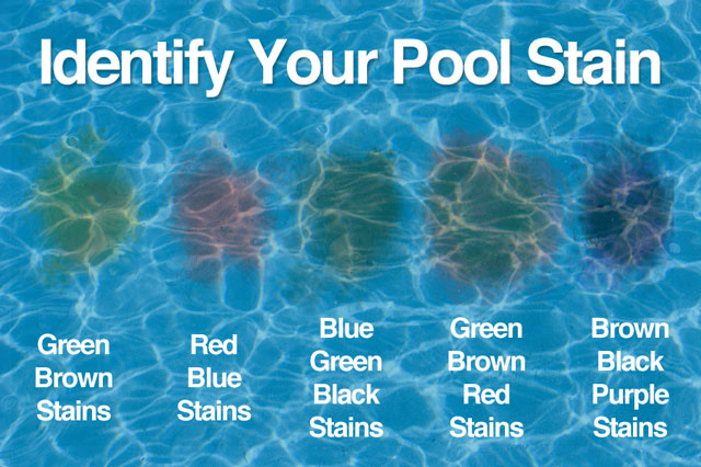 Pool Stains Causes And Treatment Nj Pool Service Blog