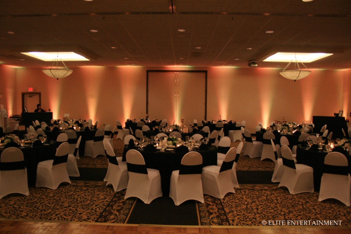 chair covers at wedding reception baby floor white stretch elite entertainment bridal posted in hilton