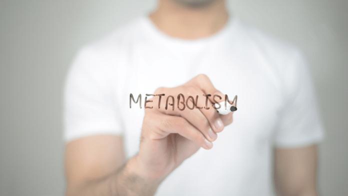 slow metabolism
