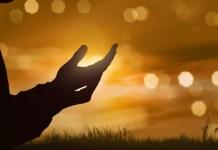 God or Allah? Language Differences Misconception | By Adebayo Sodiq (RSA)