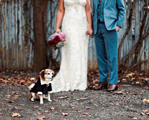 brides with dog - hudson wedding